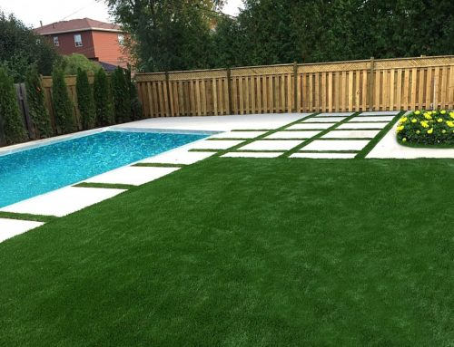Toronto Artificial Grass in Recreation Centres: All You Need To Know